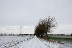 * schnee * snow * I (Anna-logisch) Tags: schnee snow nikond7000 landschaft landscape cold winter