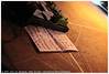 DOOL @ Vera Mainstage (Dit is Suzanne) Tags: 02032017 img0164 nederland netherlands нидерланды гронинген groningen vera veramainstage ©ditissuzanne canoneos40d sigma30mmf14exdchsm concert gig концерт dool ggull setlist pedalen pedals педалы сетлист availablelight beschikbaarlicht views150