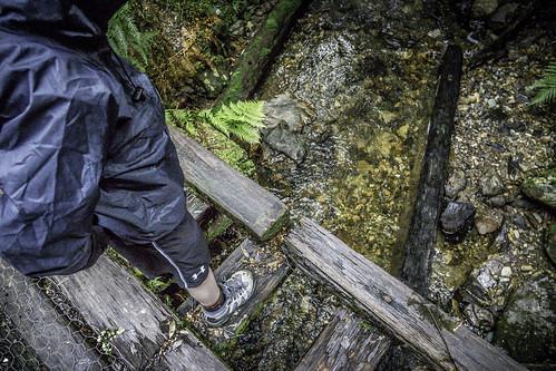 Bushwalking #4, Montezuma Falls, Tasmania's West Coast