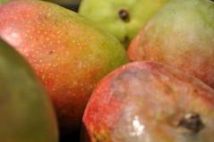 mango (ros-marie) Tags: mango fotosondag fs150830 skiftningar