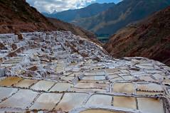 Peru_0175 (Radimek) Tags: travel peru southamerica inca salt adventure sacredvalley maras saltevaporationponds urubambavalley salinasdemaras