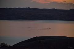 Low-Flying Cormorants_2RR6295 (RRobertsphoto) Tags: sunset cormorants northdakota vformation lowflying lakesakakawea