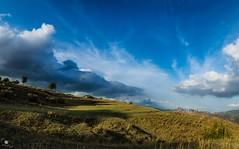 Hill (OuSsama JB) Tags: sky tree grass clouds algeria landscapes hill jijel