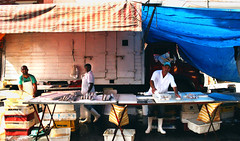 street market (pedropapini) Tags: world life street people woman fish man color brasil truck work canon photography eos photo store day market earth feira pedro peixe saturation rua paulo sao job seller mundo t2i papini