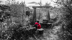 Red Jacket (tompickwellphotography) Tags: art wall forest cumbria concept conceptualart grizedale andygoldsworthy grizedaleforest lakedisctrict