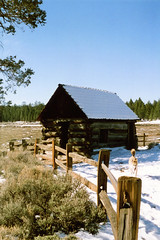 Beirette SL200 Holcomb Valley - Belleville () Tags: california winter lake snow mountains history forest fire gold san hiking mining southern socal rush lucky hanging arrowhead baldwin bigbear miners wildfire bernadino