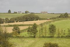 Wembury (carolemason) Tags: trees landscape fields wembury