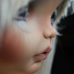 Glacia, new baby very soon for adoption 💙❄️ ❤️❤️❤️❤️❤️❤️❤️❤️❤️❤️❤️ Glacia, una nueva pequeña que muy pronto estará en adopción 💙❄️