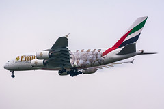 """[CDG] Emirates """"Real Madrid Livery"""" Airbus A380-861 _  A6-EOA (thibou1) Tags: madrid airplane real nikon aircraft emirates airbus a380 spotting cdg airbusa380 lfpg flyemirates d7100 a380861 a6eoa thierrybourgain realmadridlivery"""