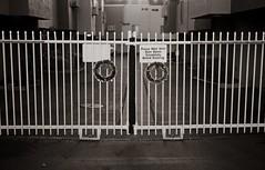 A patient christmas (efo) Tags: california christmas bw gate kodak wreath sanpablo medalistii