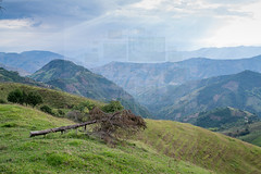 Colombian Vertigo 2015- www.wmaisy.com -26 aout 2015 -263.jpg (Wilfried Maisy Photojournaliste) Tags: photography photojournalism co antioquia colombie photojournalisme salamina photographiehumaniste photographiedocumentaire