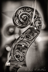 violin stradivarius scroll (mcphee.judy) Tags: violin stradivarius scroll musicinstrument