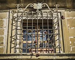 Ferroflores / Ironflowers (Ignacio M. Jiménez) Tags: hierro ferro flores flowers forja forge tiznajo ubeda jaen andalucia andalusia españa spain ignaciomjiménez ventana reja window grille