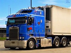 photo by secret squirrel (secret squirrel6) Tags: secretsquirrel6truckphotos craigjohnsontruckphotos bigrig huge blue australiantruck kenworth cabover thermoking coe kw 2013 truckstop cummins