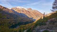... And let there be light. (Marco MCMLXXVI) Tags: cogne aosta italy alps alpi grivola mountain montagna hiking escursionismo morning light shadow lightandshadow outdoor nature landscape vista view panorama autumn fall autunno forest trees ice snow blue sky valley deep ridge sony ilce6000 a6000 pz1650 mountainside canyon scenery
