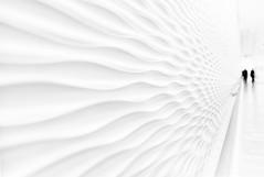 ...streamlined II... (*ines_maria) Tags: vienna wien austria city urban urbanart art reflection silhouette streamline white wave couple candid bw mono monochrome blackandwhite highkey panasonicdmcgx8 blancetnoire