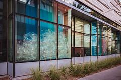 20170209-JHenryNesting-07 (cityoflasvegasPIO) Tags: art artexhibit artwork cityhall firststreet flockflockflock gallery jenniferhenry lasvegas nesting nevada vegas sylvester collier