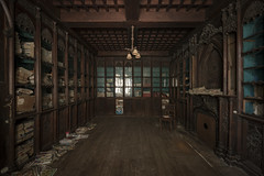 The library of wood (Woda Pho) Tags: woda andrea doria d810 nikon wood castel manor bibliotheque