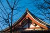 20170115-_DQH0038.jpg (ykgraph) Tags: sdquattroh sigma 50mmf14 foveon 東京 日本 tokyo japan sdquattro art