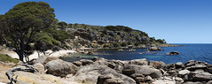 Bunker Bay_Dunsborough_Western Australia