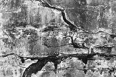 AA037 (Terry Christian Photo) Tags: nikon nikonf2 nikonf2photomic photomic kodak trix trix400 hc110 neworleans cemetery vault grave tomb ruin marble stone