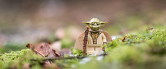 The New Yoda (alternate) (Reiterlied) Tags: 18 35mm d500 dslr finland forest lego legography lens minifig minifigure moss nikon photography prime reiterlied starwars stuckinplastic toy wood yoda