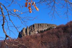 a Kakastaréj / the Rooster's Peak (debreczeniemoke) Tags: tél winter túra hiking hegy mountain kakastaréj creastacocoşului gutin erdély transilvania transylvania roosterspeak olympusem5