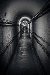 Inside Maginot Line (loic.pettiti) Tags: autoiso afareasinglearea affinetune16 dofinf303minf f71 focallength240mm35mmequivalent360mm focusdistance1189m focusmodeafs hyperfocal405m iso3200 programmanual shootingmodesingleframe speed125 vron wbauto1 lenstamron2470mmf28divc