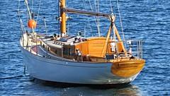 IMG_4640 Malohi. (Boat bloke) Tags: canon coast boat ship waterfront harbour yacht sydney australia tug sydneyharbour sx50hs