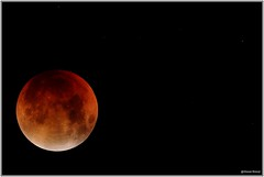 Supermoon Total eclips moon - totale maansverduistering 28 september 2015 - 008 (wrblokzijl) Tags: moon eclipse luna telescope total bloodmoon mondfinsternis telescoop penumbra maan lunaire umbra totaleclipse partical eclipselunar maansverduistering totallunareclipse måneformørkelse måneformørking eclipselunaire supermaan supermoon bloedmaan aardschaduw superbloedmaan superbloodmoon