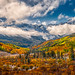 Autumn in the Sneffels Wilderness - 1st Place Published Images - William Horton