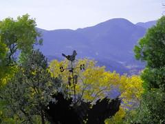 front range (ingridfrd) Tags: park art view natur trres