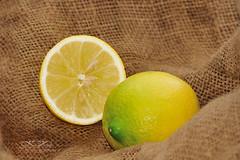 JSC_7486 (Kostas Kalomiris) Tags: orange fruits lemon juice mandarin citrus citrusfruit citrustrees