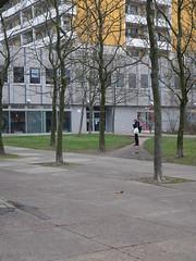Die Bäume. / 21.12.2016 (ben.kaden) Tags: berlin marzahn heleneweigelplatz architekturderddr 2016 21122016
