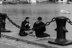 Three for Lunch (votsek) Tags: 2016 northend boston waterfront harbor water ocean people street eating seagull blackandwhite nikond750 seawall lunch
