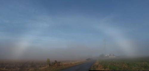 fogbow_01