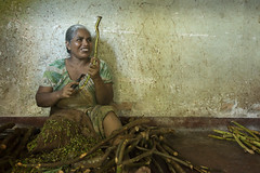 The Cinnamon Scraper (Photosightfaces) Tags: scraper woman work job labour employment labor srilanka srilankan cinnamon sticks sitting smile sri lanka lankan