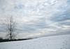 winter sky (LotusMoon Photography) Tags: winter snow tree sky clouds light outdoor itasca illinois dupage seasons nature landscape annasheradon lotusmoonphotography springbrooknaturecenter