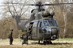 ZJ954_PumaHC1_RoyalAirForce_SPTA_Img01 (Tony Osborne - Rotorfocus) Tags: salisbury plain training area 2010 confined aerospatiale airbus helicopters westland puma hc1 royal air force united kingdom intrepid owl