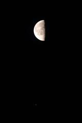 Moon and Jupiter today (Denis Vandewalle) Tags: moon lune planète planet conjonction astronomy astrophoto astro sky skynight denisvandewalle pentaxk5 night nuit
