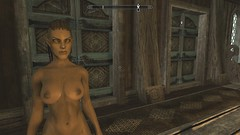 Female High Elf Nord Mix (Maxdata_19) Tags: female nord highelf skyrim elderscrolls redguard gold