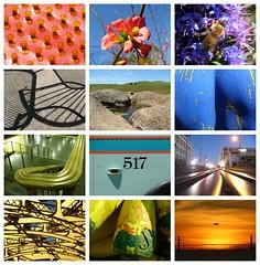 Calendar Portrait 2011 (Jef Poskanzer) Tags: calendar portrait 12months 2011 t
