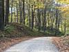 Backroads of Indiana (Jayhawk Explorer) Tags: ipiccy woods trees road backroads marshallcoveredbridge tangier indiana in roadtrip coveredbridgeexcursion lush autumn fall parkecounty