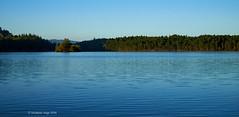 Island in the loch (I)/Isla en el Lago (I) (Modesto Vega) Tags: nikon nikond600 d600 fullframe lochaneilein scotland cairngorms cairngormsnationalpark water waterripple ripple islanmd forest reflection landscape outdoor
