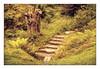 Mystery Garden (williamwalton001) Tags: trees texture tree timber borders framed fineart woodlands pentaxart plants park trolled