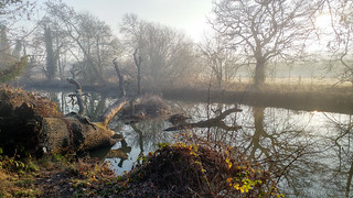 It was all on a misty morning
