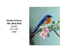 "Mr. Blue Bird • <a style=""font-size:0.8em;"" href=""https://www.flickr.com/photos/124378531@N04/32485428125/"" target=""_blank"">View on Flickr</a>"