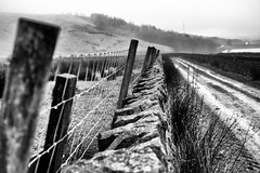 The Fence, The Footpath & The Fog (Missy Jussy) Tags: fence footpath fog wall drystonewalls fields hillside piethornevalley rochdale lancashire landscape mono monochrome blackwhite bw blackandwhite saddleworth canon dof depthoffield canon50mm canon5dmarkll