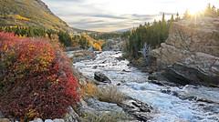 Swiftcurrent Creek, Glacier National Park (ken.helal) Tags: