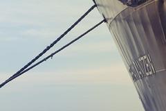 Jantzen (Basileia Gorgo) Tags: balticsea deutschland eos550d februar february germany hafen mecklenburgvorpommern ostsee outdoor rostock schiff tau winter dew rope makro tamron90mm harbour port ship